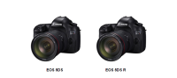 Canon EOS單眼相機  再度獲獎!