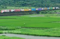 台鐵130週年 彩繪普悠瑪成移動風景