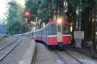 阿里山森鐵郵輪列車  暑假增停多林及十字路