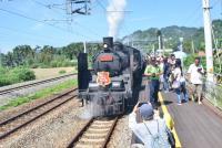 仲夏寶島號 蒸汽火車開跑