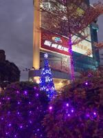 晶冠廣場聖誕市集 音樂 美食營造歡樂氛圍