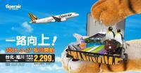 台虎將飛北海道旭川 單程未稅2000出頭