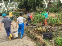 台北客家公園舉辦 小小農夫農藝教育