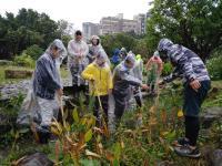 立春農民節  青少年志工 齊心清掃客家公園濕地