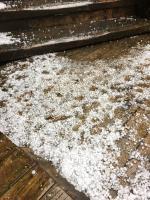 力麗馬告生態園區 下冰雹